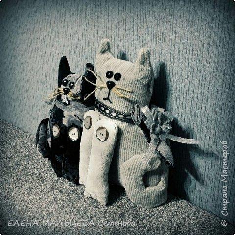 Увидела котов у Елены Пилар  ,http://stranamasterov.ru/user/29512 не смогла пройти мимо.захотелось себе что то похожее сотворить. фото 6