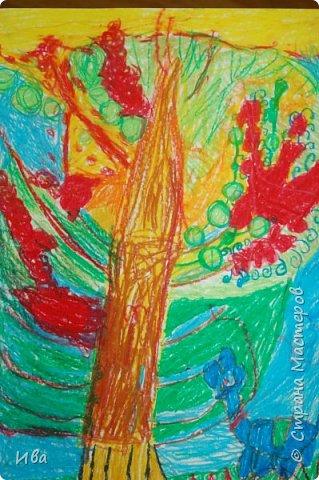Вессенние деревья фото 18