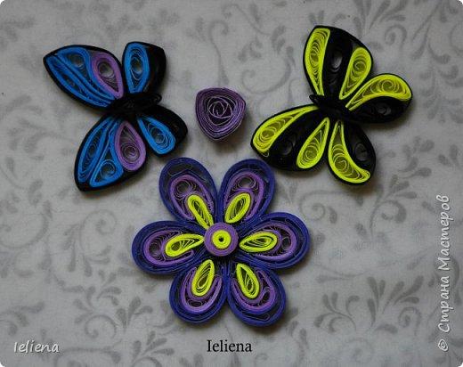 Весна разбудила первых бабочек ))) фото 4