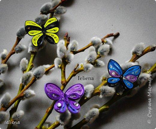 Весна разбудила первых бабочек ))) фото 8