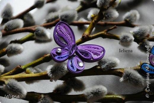 Весна разбудила первых бабочек ))) фото 9