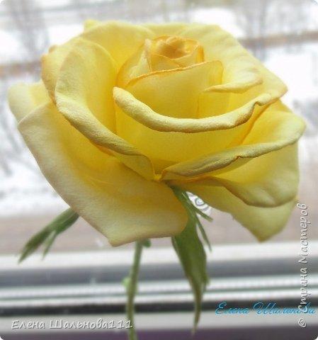 Роза из зефирного фоамирана фото 1