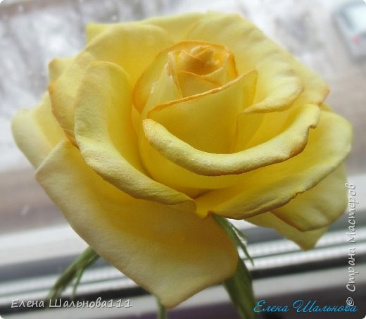 Роза из зефирного фоамирана фото 2