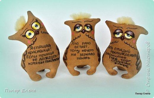 Котята-ветераны и совушки (по мотивам работ Надежды Колотьевой) фото 16