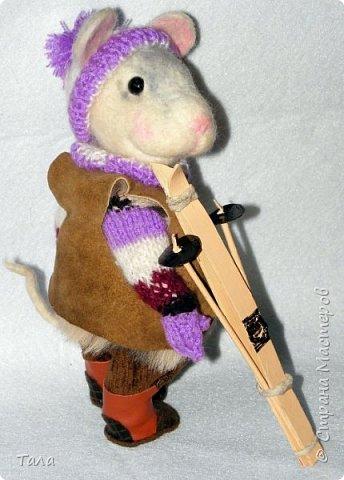 Мышь-лыжница. фото 3