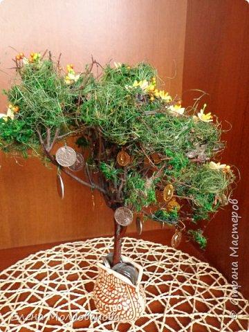 Дерево натуральное, зелень - туя, мох, сезаль, цветы - фом, монеты- настоящие (кроме 5 шт.). Размер дерева - 30 см. фото 3