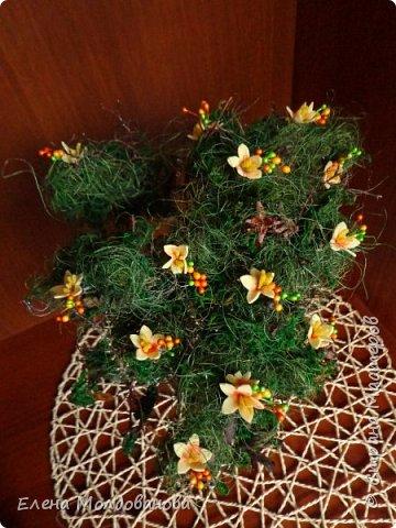 Дерево натуральное, зелень - туя, мох, сезаль, цветы - фом, монеты- настоящие (кроме 5 шт.). Размер дерева - 30 см. фото 4