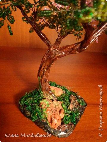 Давно не делала деревьев, даже соскучилась за ними. фото 8