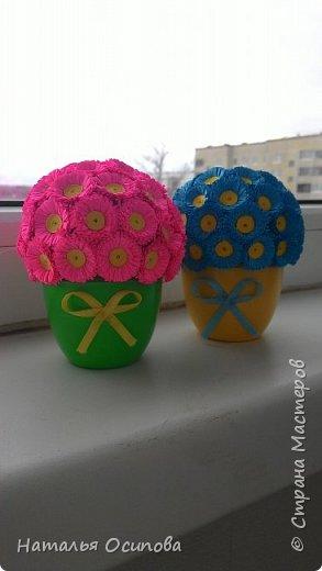 Моя новая Весна!!! фото 1