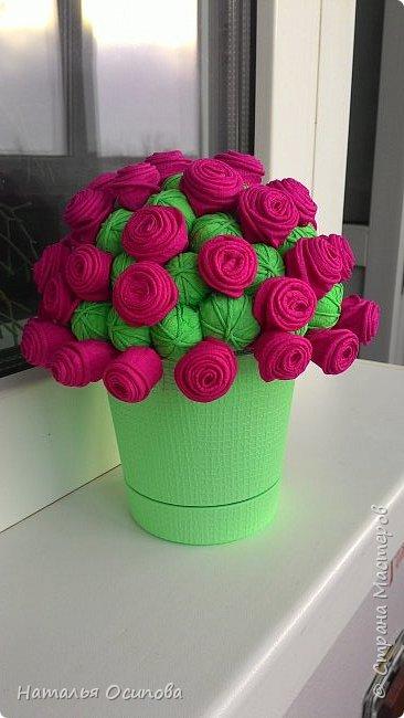 Мой топиарий с розами и шарами . фото 13