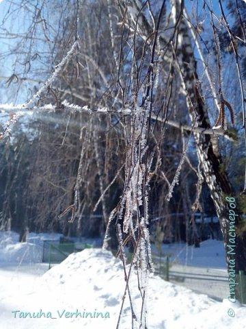 Здравствуйте! Сегодня я хочу поделиться с вами зимними фотографиями, которые были сделаны в конце февраля или начале марта.  Белая береза Под моим окном Принакрылась снегом, Точно серебром.  На пушистых ветках Снежною каймой Распустились кисти Белой бахромой.  И стоит береза В сонной тишине, И горят снежинки В золотом огне.  А заря, лениво Обходя кругом, обсыпает ветки Новым серебром.                                        (Есенин С.) фото 4