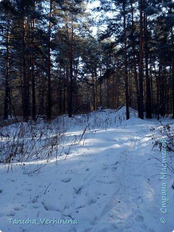 Здравствуйте! Сегодня я хочу поделиться с вами зимними фотографиями, которые были сделаны в конце февраля или начале марта.  Белая береза Под моим окном Принакрылась снегом, Точно серебром.  На пушистых ветках Снежною каймой Распустились кисти Белой бахромой.  И стоит береза В сонной тишине, И горят снежинки В золотом огне.  А заря, лениво Обходя кругом, обсыпает ветки Новым серебром.                                        (Есенин С.) фото 7