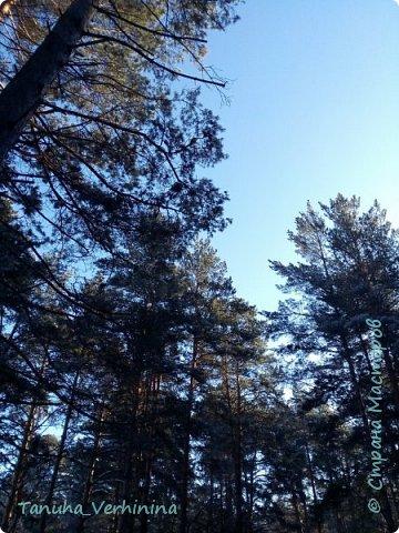 Здравствуйте! Сегодня я хочу поделиться с вами зимними фотографиями, которые были сделаны в конце февраля или начале марта.  Белая береза Под моим окном Принакрылась снегом, Точно серебром.  На пушистых ветках Снежною каймой Распустились кисти Белой бахромой.  И стоит береза В сонной тишине, И горят снежинки В золотом огне.  А заря, лениво Обходя кругом, обсыпает ветки Новым серебром.                                        (Есенин С.) фото 8