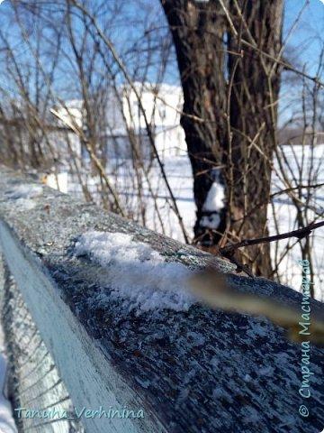 Здравствуйте! Сегодня я хочу поделиться с вами зимними фотографиями, которые были сделаны в конце февраля или начале марта.  Белая береза Под моим окном Принакрылась снегом, Точно серебром.  На пушистых ветках Снежною каймой Распустились кисти Белой бахромой.  И стоит береза В сонной тишине, И горят снежинки В золотом огне.  А заря, лениво Обходя кругом, обсыпает ветки Новым серебром.                                        (Есенин С.) фото 12