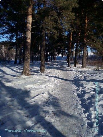 Здравствуйте! Сегодня я хочу поделиться с вами зимними фотографиями, которые были сделаны в конце февраля или начале марта.  Белая береза Под моим окном Принакрылась снегом, Точно серебром.  На пушистых ветках Снежною каймой Распустились кисти Белой бахромой.  И стоит береза В сонной тишине, И горят снежинки В золотом огне.  А заря, лениво Обходя кругом, обсыпает ветки Новым серебром.                                        (Есенин С.) фото 15