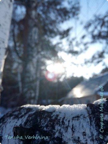 Здравствуйте! Сегодня я хочу поделиться с вами зимними фотографиями, которые были сделаны в конце февраля или начале марта.  Белая береза Под моим окном Принакрылась снегом, Точно серебром.  На пушистых ветках Снежною каймой Распустились кисти Белой бахромой.  И стоит береза В сонной тишине, И горят снежинки В золотом огне.  А заря, лениво Обходя кругом, обсыпает ветки Новым серебром.                                        (Есенин С.) фото 18