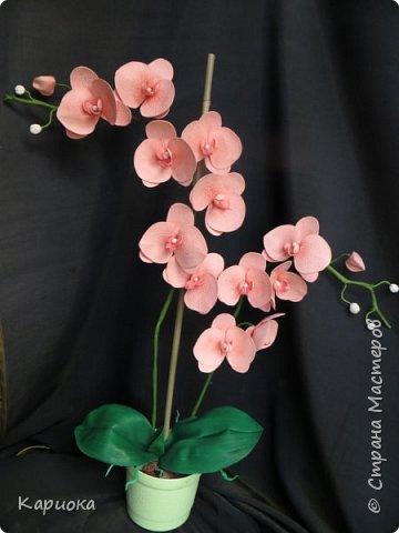 Здравствуйте! Наконец я собрала Целую орхидею, а не отдельную веточку!!! Это моя  первая  целая орхидея и вот что получилось. Не судите очень строго))) (Знаю - огрехов хватает))))  И все же готова Вам ее представить. фото 1