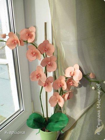 Здравствуйте! Наконец я собрала Целую орхидею, а не отдельную веточку!!! Это моя  первая  целая орхидея и вот что получилось. Не судите очень строго))) (Знаю - огрехов хватает))))  И все же готова Вам ее представить. фото 2