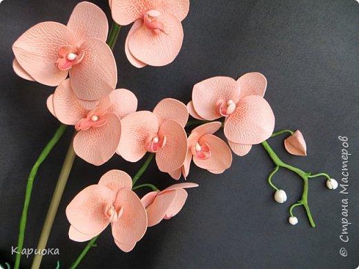 Здравствуйте! Наконец я собрала Целую орхидею, а не отдельную веточку!!! Это моя  первая  целая орхидея и вот что получилось. Не судите очень строго))) (Знаю - огрехов хватает))))  И все же готова Вам ее представить. фото 4