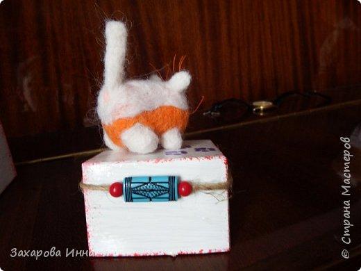 паук и мартовские коты фото 11