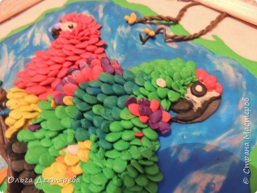 """Вот такие попугайчики у нас получились с сынулькой на конкурс """"Мир птиц"""". фото 2"""