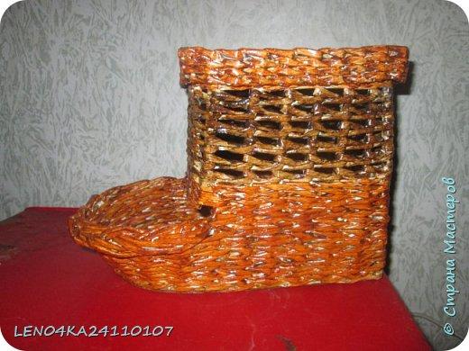 Луковый домик фото 1
