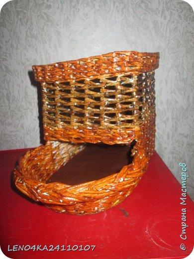 Луковый домик фото 2