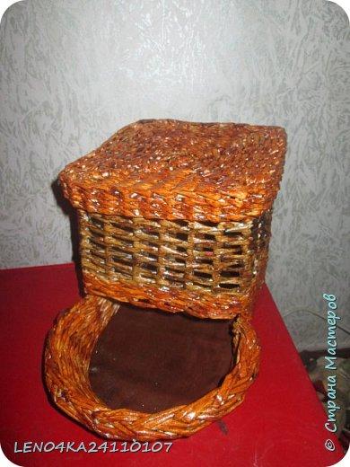Луковый домик фото 3