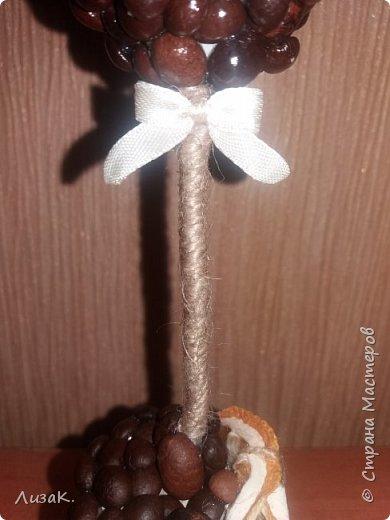 Здравствуйте, жители Страны Мастеров! На 8 марта нужно было создать какой-то быстренький и миленький подарочек для знакомой. Вот и получилось такое мини деревце в шляпке из дольки лимончика. фото 4
