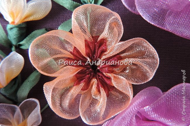 Двухцветные цветы.  Понадобится: органза (ширина 2см и 0,5см), лента атласная или шелковая(ширина 1см), нитки фото 5