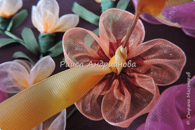Двухцветные цветы.  Понадобится: органза (ширина 2см и 0,5см), лента атласная или шелковая(ширина 1см), нитки фото 7