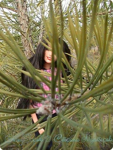 Хаю хай, это снова я.Да......чего то блоги мои зачастили.........ну да поф это же хорошо Ну так вот, преступим к делу)После того как с гор сошел последний снег, и выдались более менее теплые деньки, мы с Ванеской отправились в лес.У нас лес --это Сиянская гора. фото 10