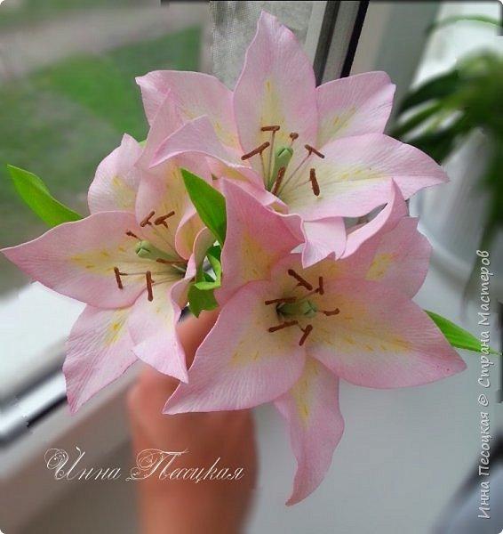 """Вот такая весна у меня, хотя за окном идет снежок... Лилии, розы, белый мак и хмель """"собрались"""" у меня в корзинки. фото 4"""