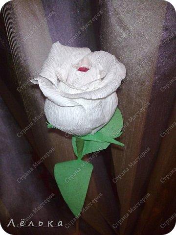 Захотелось поделиться с вами своими гофрированными цветами с конфетами.  Корзинка со сладким букетиком подарок на день варения))) фото 3