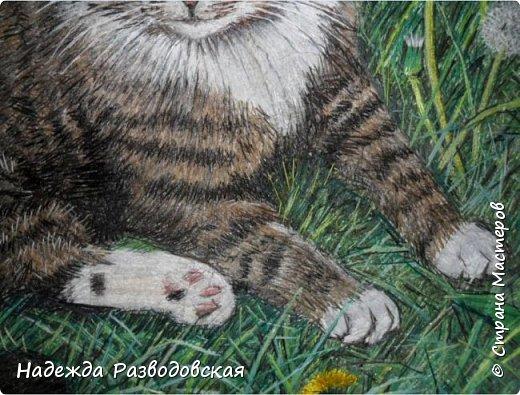 Наконец-то вышила  гладью еще одного кота. Как всегда  для  своей вышивки использовала синтетическую нить. фото 19