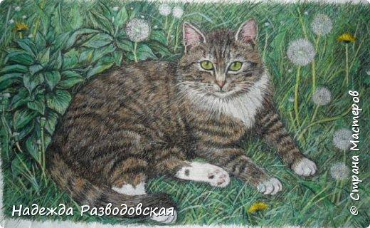 Наконец-то вышила  гладью еще одного кота. Как всегда  для  своей вышивки использовала синтетическую нить. фото 25