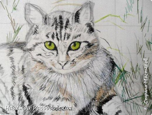 Наконец-то вышила  гладью еще одного кота. Как всегда  для  своей вышивки использовала синтетическую нить. фото 5