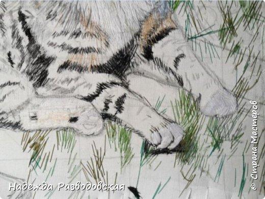 Наконец-то вышила  гладью еще одного кота. Как всегда  для  своей вышивки использовала синтетическую нить. фото 7
