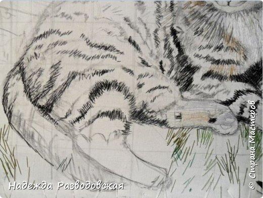 Наконец-то вышила  гладью еще одного кота. Как всегда  для  своей вышивки использовала синтетическую нить. фото 8