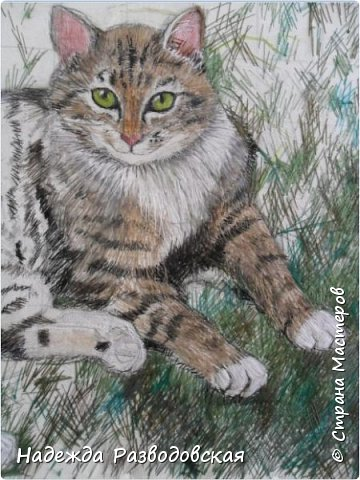 Наконец-то вышила  гладью еще одного кота. Как всегда  для  своей вышивки использовала синтетическую нить. фото 10