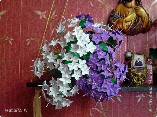 Кампанула(Жених и Невеста в одном горшке)  из фоамирана  фото 1