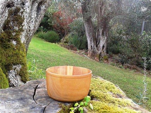 салатница: оливковое дерево, диаметр: 12см, глубина: 5,5см, обработано оливковым маслом  фото 1