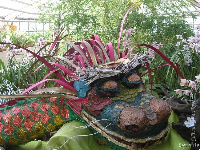 """Сейчас в фондовой оранжерее Главного Ботанического сада г. Москвы представлена выставка орхидей, камелий """"Поэзия Цветов"""" и экспозиция цветущих азалий! Спешите, ежедневно с 11 до 18, дарите себе праздник цветов! фото 30"""