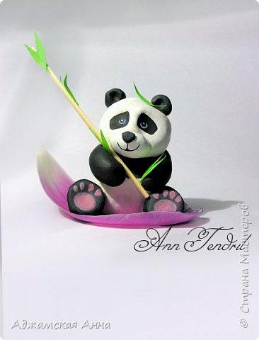 панда) фото 2