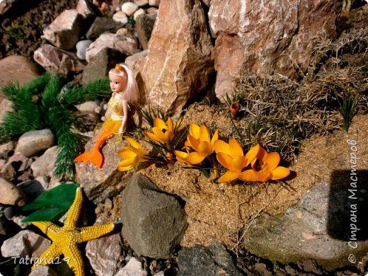 Давно мечтала иметь водоемчик возле горки.Делала из большого тазика-там селились лягушки и вода гнила.В этом году перенесла горку и смастерила небольшое озерцо из герметика. фото 2
