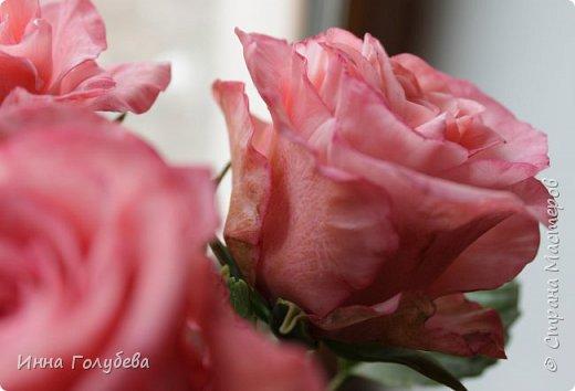 Девочки,и опять я с розами) Надеюсь,вы еще от них не устали.Я,например,уже немного устала,но мои заказы идут в такой последовательности: розы,розы,розы,какие-то другие цветы или композиция и снова розы,розы....Нет,вы не подумайте,я не жалуюсь) Значит буду набирать опыт и навыки на розах) Желаю приятного просмотра) фото 9