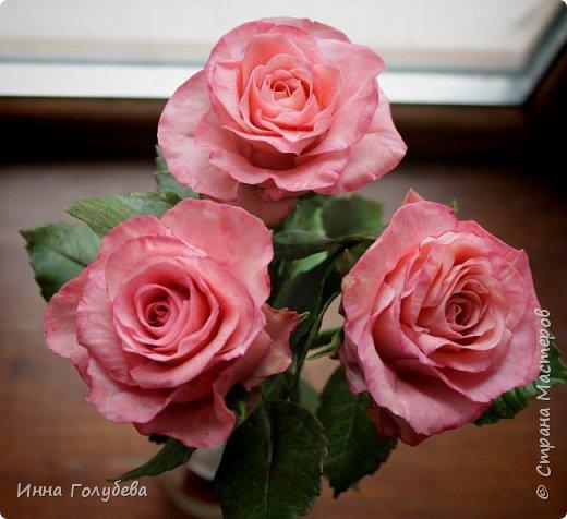 Девочки,и опять я с розами) Надеюсь,вы еще от них не устали.Я,например,уже немного устала,но мои заказы идут в такой последовательности: розы,розы,розы,какие-то другие цветы или композиция и снова розы,розы....Нет,вы не подумайте,я не жалуюсь) Значит буду набирать опыт и навыки на розах) Желаю приятного просмотра) фото 6