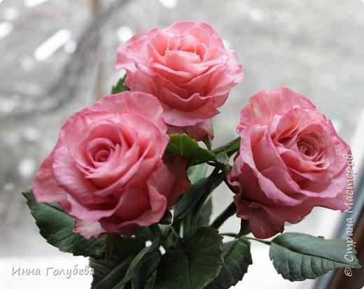 Девочки,и опять я с розами) Надеюсь,вы еще от них не устали.Я,например,уже немного устала,но мои заказы идут в такой последовательности: розы,розы,розы,какие-то другие цветы или композиция и снова розы,розы....Нет,вы не подумайте,я не жалуюсь) Значит буду набирать опыт и навыки на розах) Желаю приятного просмотра) фото 3
