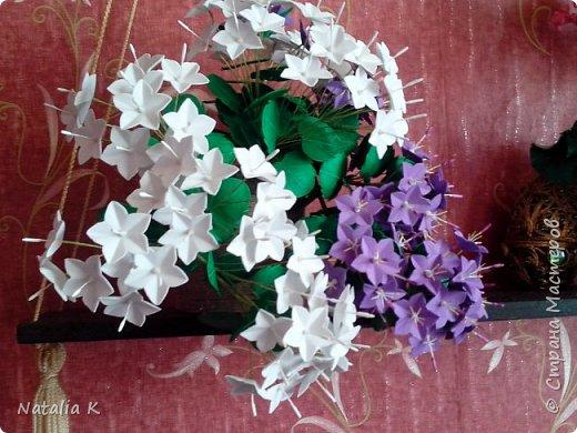 Кампанула(Жених и Невеста в одном горшке)  из фоамирана  фото 3