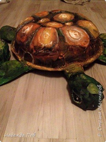 Черепаха papier mashe фото 4